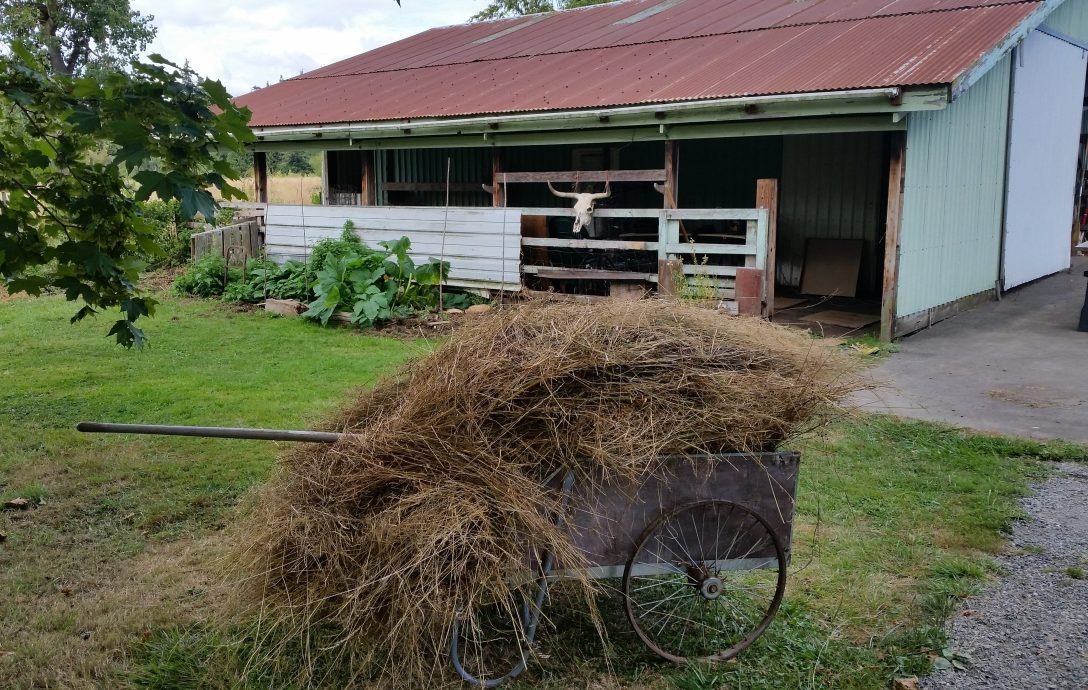 hay_wagon.jpg