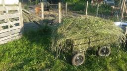 Handmade Hay