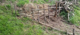 Wattle retaining wall.
