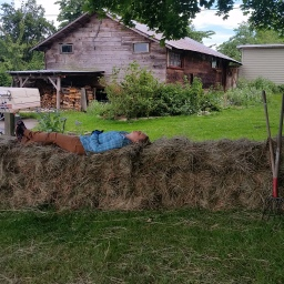 Better weather for hay making and ultralight bales.