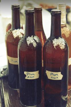 2017 plum wine