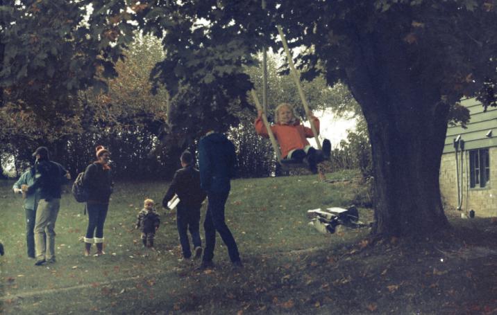 The tree swing