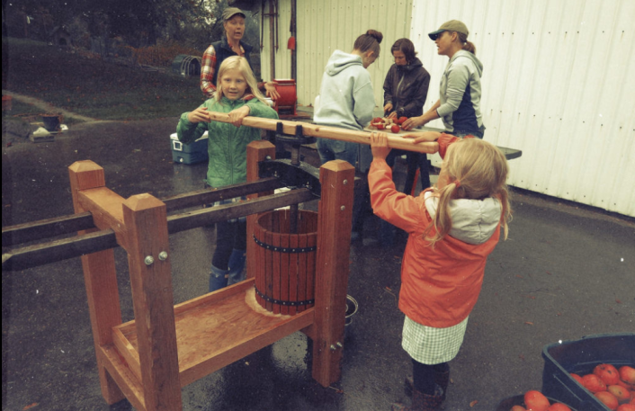 Working the cider press
